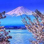 日本旅游攻略,ALEXANDER-2020年东京奥运会,JAPAN,日本第一酵素,ALEXANDER&SUN,纳豆精,纳豆激酶日本旅游指南,-樱花,富士山