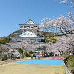 日本旅游攻略,ALEXANDER-2020年东京奥运会,JAPAN,日本第一酵素,ALEXANDER&SUN,纳豆精,纳豆激酶日本旅游指南,-热海城