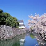 日本旅游攻略,ALEXANDER-2020年东京奥运会,JAPAN,日本第一酵素,ALEXANDER&SUN,纳豆精,纳豆激酶日本旅游指南,-大坂城