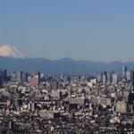 日本旅游攻略,ALEXANDER-2020年东京奥运会,JAPAN,日本第一酵素,ALEXANDER&SUN,纳豆精,纳豆激酶日本旅游指南,-富士山,东京SKYTREE,TOKYO SKYTREE