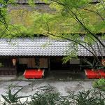 日本旅游攻略,ALEXANDER-2020年东京奥运会,JAPAN,日本第一酵素,ALEXANDER&SUN,纳豆精,纳豆激酶日本旅游指南,-京都竹林-平野屋