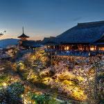 日本旅游攻略,ALEXANDER-2020年东京奥运会,JAPAN,日本第一酵素,ALEXANDER&SUN,纳豆精,纳豆激酶日本旅游指南,-京都清水寺夜景
