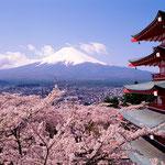 日本旅游攻略,ALEXANDER-2020年东京奥运会,JAPAN,日本第一酵素,ALEXANDER&SUN,纳豆精,纳豆激酶日本旅游指南,-京都,富士山