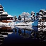 日本旅游攻略,ALEXANDER-2020年东京奥运会,JAPAN,日本第一酵素,ALEXANDER&SUN,纳豆精,纳豆激酶日本旅游指南,-日本雪景