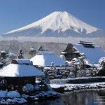 日本旅游攻略,ALEXANDER-2020年东京奥运会,JAPAN,日本第一酵素,ALEXANDER&SUN,纳豆精,纳豆激酶日本旅游指南,-忍野冬富士山