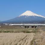 日本旅游攻略,ALEXANDER-2020年东京奥运会,JAPAN,日本第一酵素,ALEXANDER&SUN,纳豆精,纳豆激酶日本旅游指南,-日本新干线,富士山