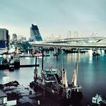 日本旅游攻略,ALEXANDER-2020年东京奥运会,JAPAN,日本第一酵素,ALEXANDER&SUN,纳豆精,纳豆激酶日本旅游指南,-Rainbow-Bridge-boats-buildings_1920x1080