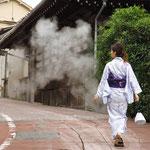 日本旅游攻略,ALEXANDER-2020年东京奥运会,JAPAN,日本第一酵素,ALEXANDER&SUN,纳豆精,纳豆激酶日本旅游指南,-别府温泉,铁轮街道