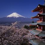 日本旅游攻略,ALEXANDER-2020年东京奥运会,JAPAN,日本第一酵素,ALEXANDER&SUN,纳豆精,纳豆激酶日本旅游指南,-京都富士山