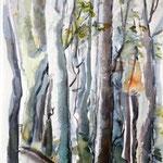 Im Walde, 48x36