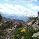 Foto: Arjan de Kreek_____     -     Über Stock und Stein