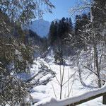 Foto: Helmut Warta                                                                                        Winter im Kleinwalsrtal