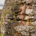 Burg Neideck - ein sehr eisenhaltiges Rinnsal