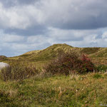 Durch die Heidelandschaft in Richtung Strand