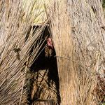 Biggi in der Strohhütte