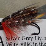 Silver Grey Fly