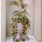Имитация итальянского растения
