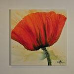 Mohn, rot, 120/120 Acrylauf Leinwand