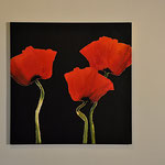 Black Poppies, 80/80, Acryl auf Leinwand
