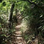 月山への尾根道