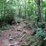 孫三瓶山から太平山への道