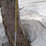 積雪2~3mくらい