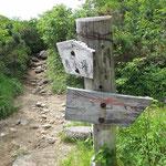 行者岩への分岐