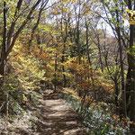分岐から北温泉への道