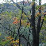 秋色の向こうにこれから歩く山並み