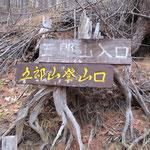 ここから林道と別れ左へ登る