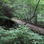 橋を渡りロックガーデン(岩石園)へ