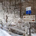 カーブNO.7の所に登山口がある