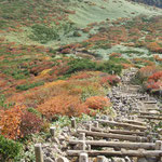 清水平への下り階段