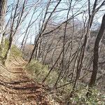 初冬の山道