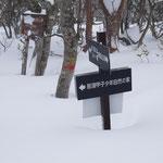 ハイキングコースの案内板