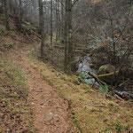 沢沿いの登山道を歩く