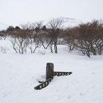 同分岐雪景色・2009.3.1