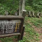 長岡藩士の墓・ブレました