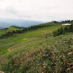 滑る木道、槙道を通ると駒ノ小屋が見えた