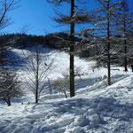 林道を行きマナスル山荘前から入った