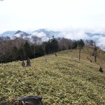 左側のトガッタ山が社山