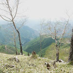 赤倉山を見ながら食事(あそこも春か秋に歩きたい)