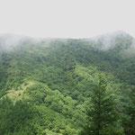 雲の切れ間から烏帽子岳(右側)