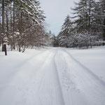 真ん中の雪が邪魔だった