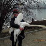 Carmen hat den Schwan eingefangen und bringt ihn zum Tierarzt.