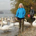 Inspektion der Wasservögel