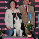 Tom Best Veteran in Show Brno 2011