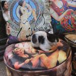 Oum Kalthoum, Marylin Monroe und das Kätzchen am Bazar Chan el-Chalili
