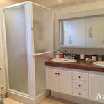 Avant rénovation: douche et meuble double vasque