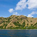 Am Ziel - Insel Rinca
